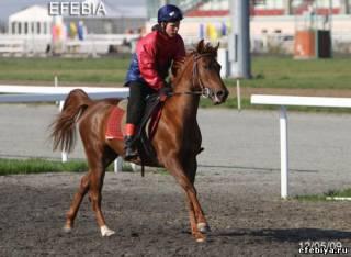 Казань - Эфебия